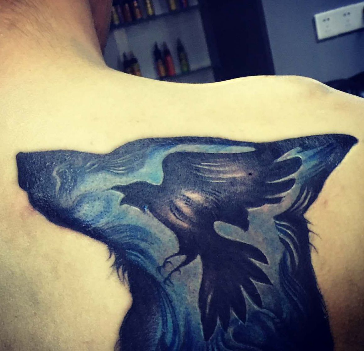 ptak w głowie wilka