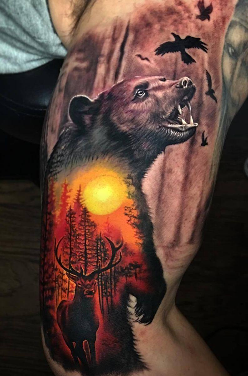jeleń i niedźwiedź