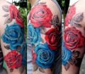 blue and red roses