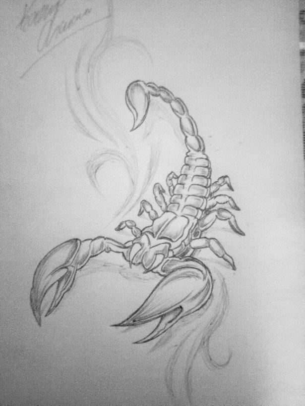 Wzory Tattoo Skorpiony Tatuaze Funny